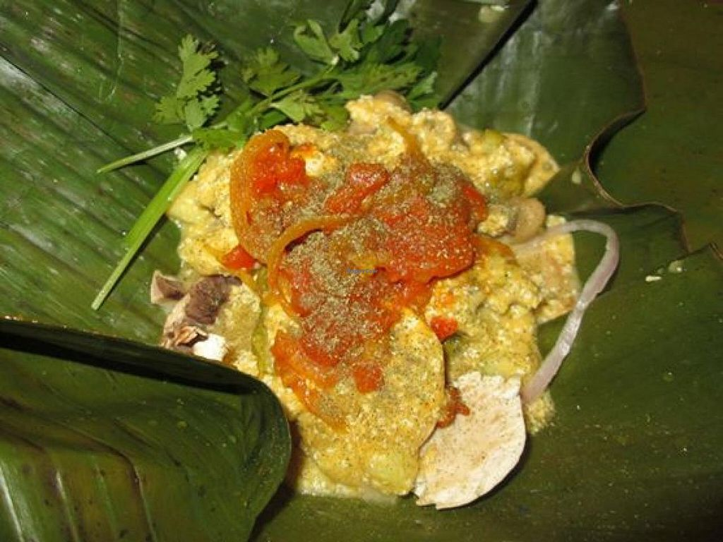 "Photo of Ital-Alimento Natural  by <a href=""/members/profile/davidayala"">davidayala</a> <br/>Vegan ITal Tamales  <br/> January 24, 2015  - <a href='/contact/abuse/image/54046/91268'>Report</a>"