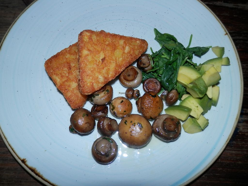 """Photo of Argo Lounge  by <a href=""""/members/profile/Vegan_Belle"""">Vegan_Belle</a> <br/>Hash browns, mushrooms, spinach and avocado <br/> December 4, 2017  - <a href='/contact/abuse/image/54054/332306'>Report</a>"""