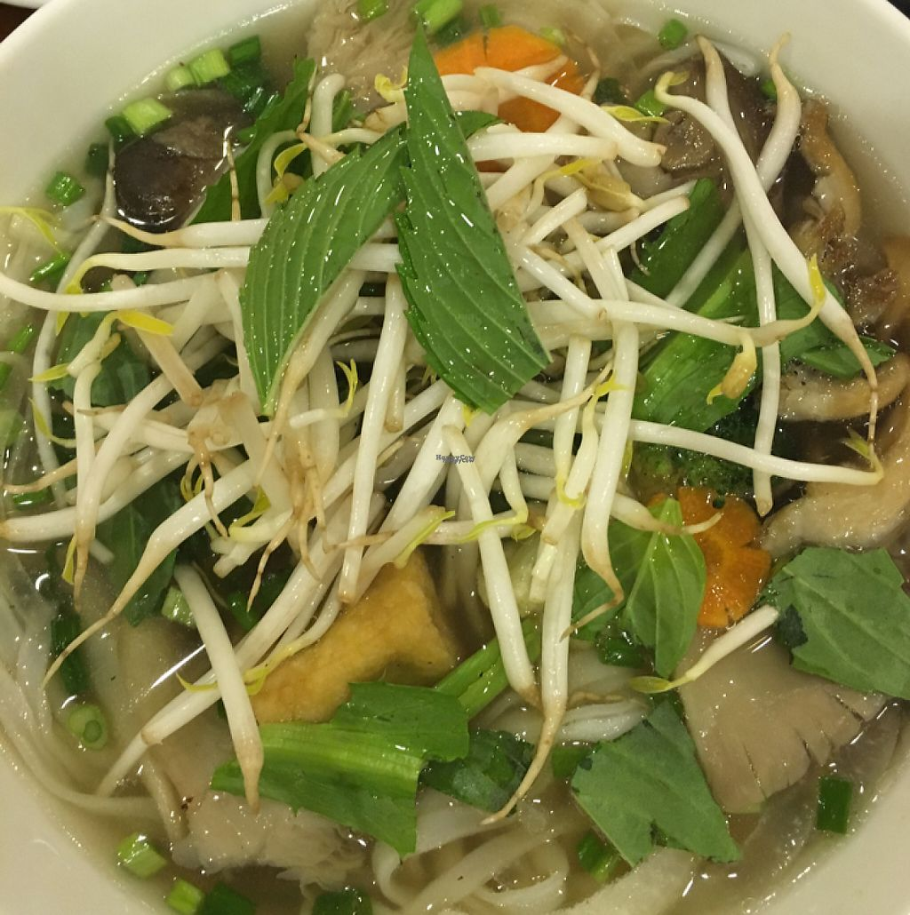 "Photo of Phuong Mai Vegetarian  by <a href=""/members/profile/hanski86"">hanski86</a> <br/>Pho deliciousness  <br/> March 13, 2017  - <a href='/contact/abuse/image/54059/235920'>Report</a>"