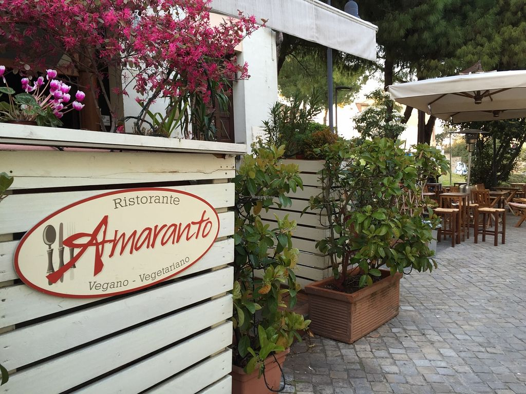 """Photo of Amaranto  by <a href=""""/members/profile/Alessandro"""">Alessandro</a> <br/>centrally located <br/> April 1, 2016  - <a href='/contact/abuse/image/54097/142193'>Report</a>"""