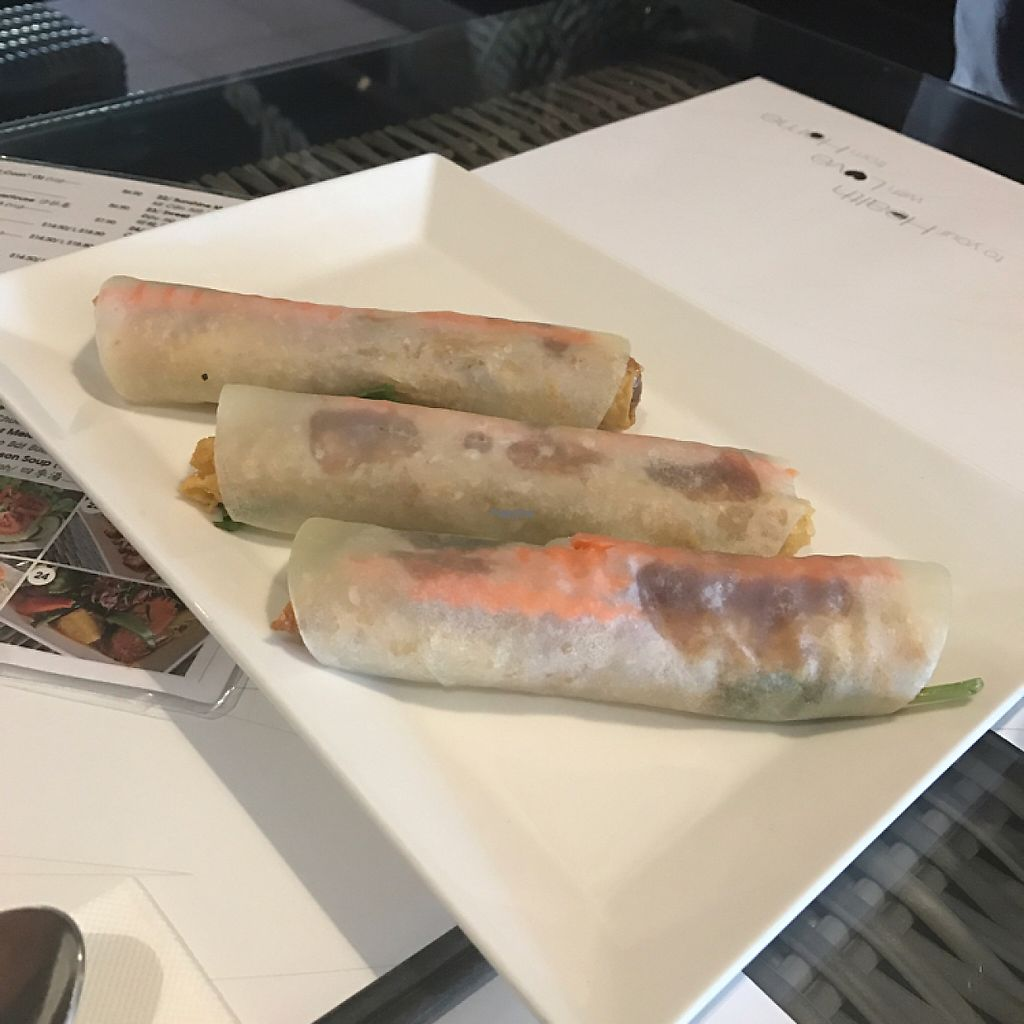 """Photo of Veggie House  by <a href=""""/members/profile/Lozcriston"""">Lozcriston</a> <br/>Beijing duck wraps  <br/> November 17, 2016  - <a href='/contact/abuse/image/54113/191264'>Report</a>"""