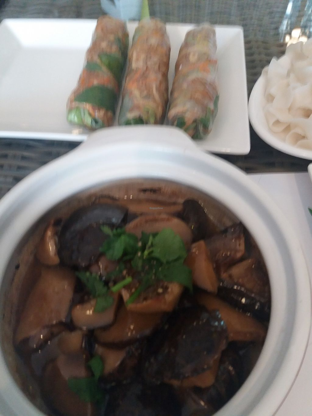 """Photo of Veggie House  by <a href=""""/members/profile/veganvirtues"""">veganvirtues</a> <br/>Baled shitake and fresh spring rolls <br/> September 16, 2017  - <a href='/contact/abuse/image/54113/304930'>Report</a>"""