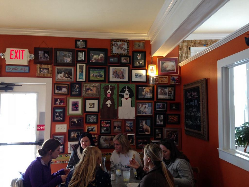 """Photo of 2 Dog Cafe  by <a href=""""/members/profile/Yelwark"""">Yelwark</a> <br/>Artwork at 2Dog <br/> January 6, 2015  - <a href='/contact/abuse/image/54194/89669'>Report</a>"""