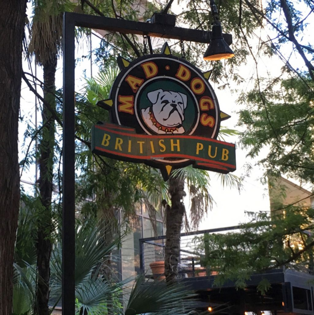 """Photo of MadDogs British Pub  by <a href=""""/members/profile/BrendaForsythe"""">BrendaForsythe</a> <br/>Great pub! <br/> August 9, 2016  - <a href='/contact/abuse/image/54408/167105'>Report</a>"""