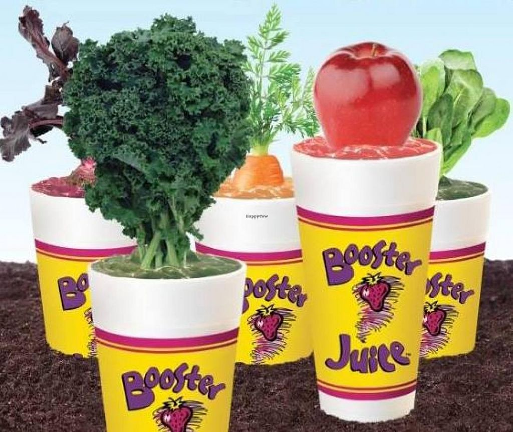 "Photo of Booster Juice  by <a href=""/members/profile/community"">community</a> <br/>Booster juice <br/> January 5, 2015  - <a href='/contact/abuse/image/54410/89588'>Report</a>"