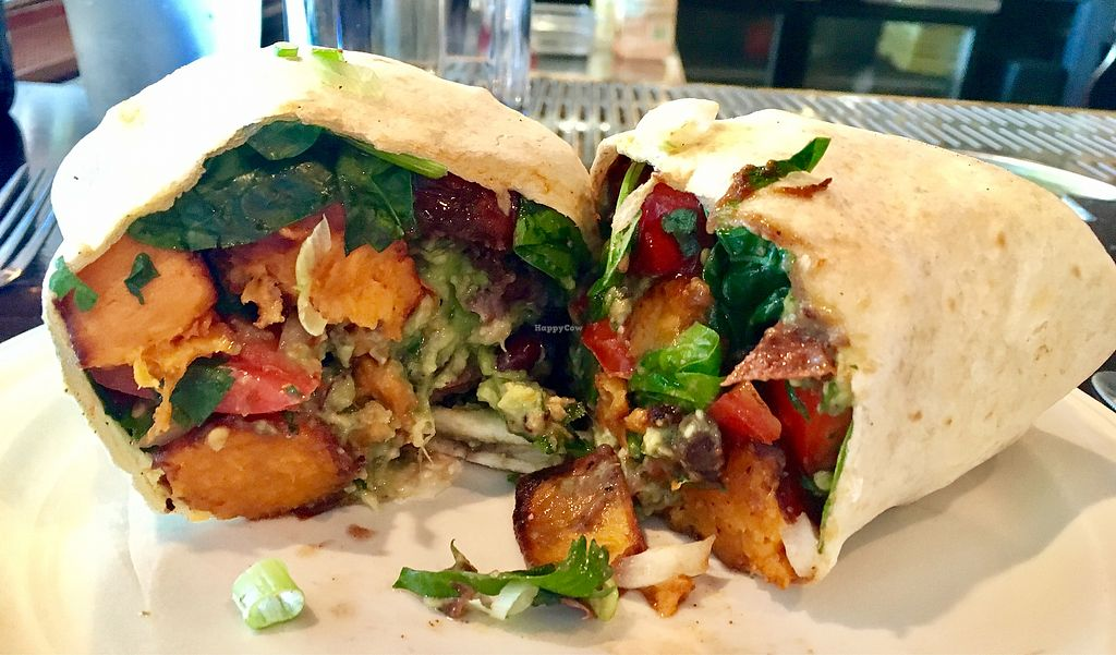 "Photo of The Growling Rabbit  by <a href=""/members/profile/milos99"">milos99</a> <br/>vegan burrito <br/> July 24, 2017  - <a href='/contact/abuse/image/54426/284081'>Report</a>"