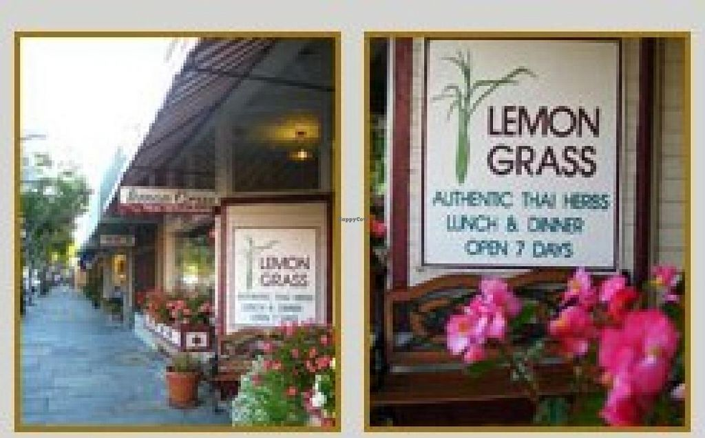 """Photo of Lemon Grass  by <a href=""""/members/profile/community"""">community</a> <br/>Lemon Grass <br/> January 8, 2015  - <a href='/contact/abuse/image/54487/89782'>Report</a>"""