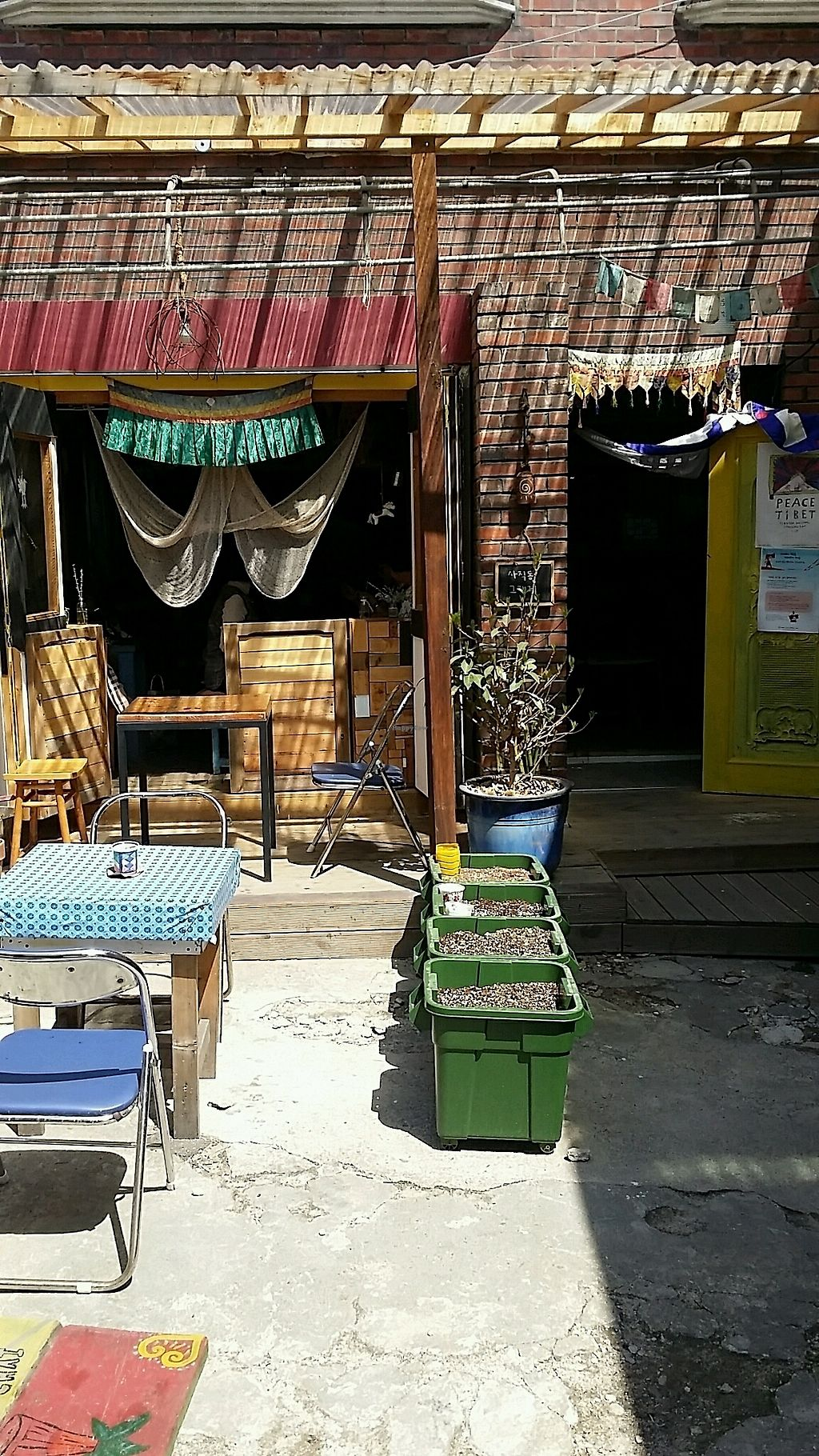 """Photo of The Store Sajik-dong - 사직동 그 가게  by <a href=""""/members/profile/JiriJerabek"""">JiriJerabek</a> <br/>yard <br/> April 13, 2018  - <a href='/contact/abuse/image/54509/385016'>Report</a>"""