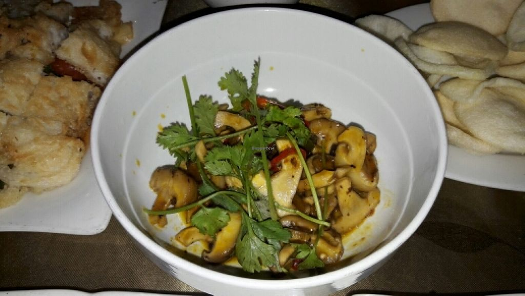 """Photo of CLOSED: Tam Chau  by <a href=""""/members/profile/Dbuc"""">Dbuc</a> <br/>Mushrooms in soya chili sauce <br/> April 30, 2016  - <a href='/contact/abuse/image/54535/146797'>Report</a>"""