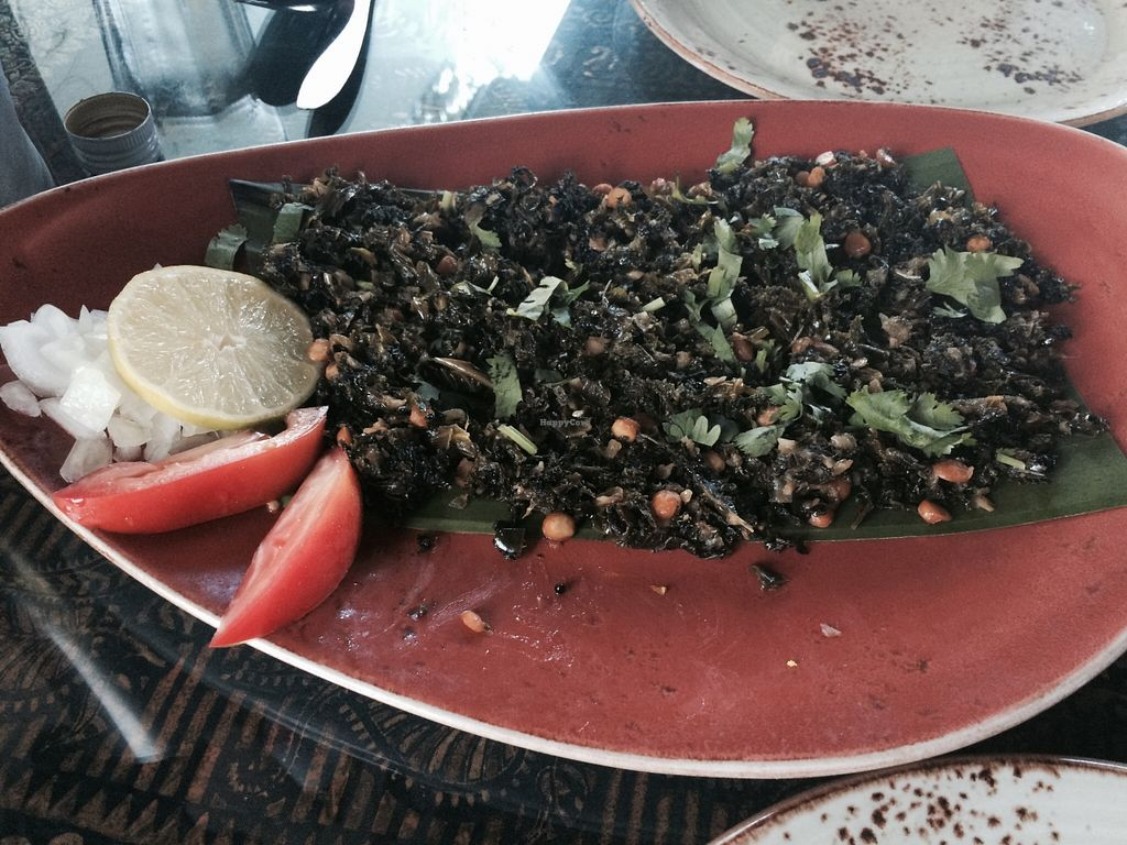 "Photo of New India Cuisine  by <a href=""/members/profile/AustinJardinera"">AustinJardinera</a> <br/>kale with chick peas <br/> October 11, 2015  - <a href='/contact/abuse/image/54620/121034'>Report</a>"