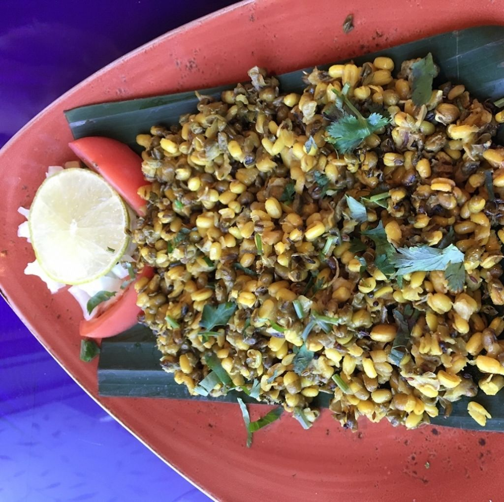 "Photo of New India Cuisine  by <a href=""/members/profile/AustinJardinera"">AustinJardinera</a> <br/>sprouted beans <br/> February 7, 2016  - <a href='/contact/abuse/image/54620/226132'>Report</a>"