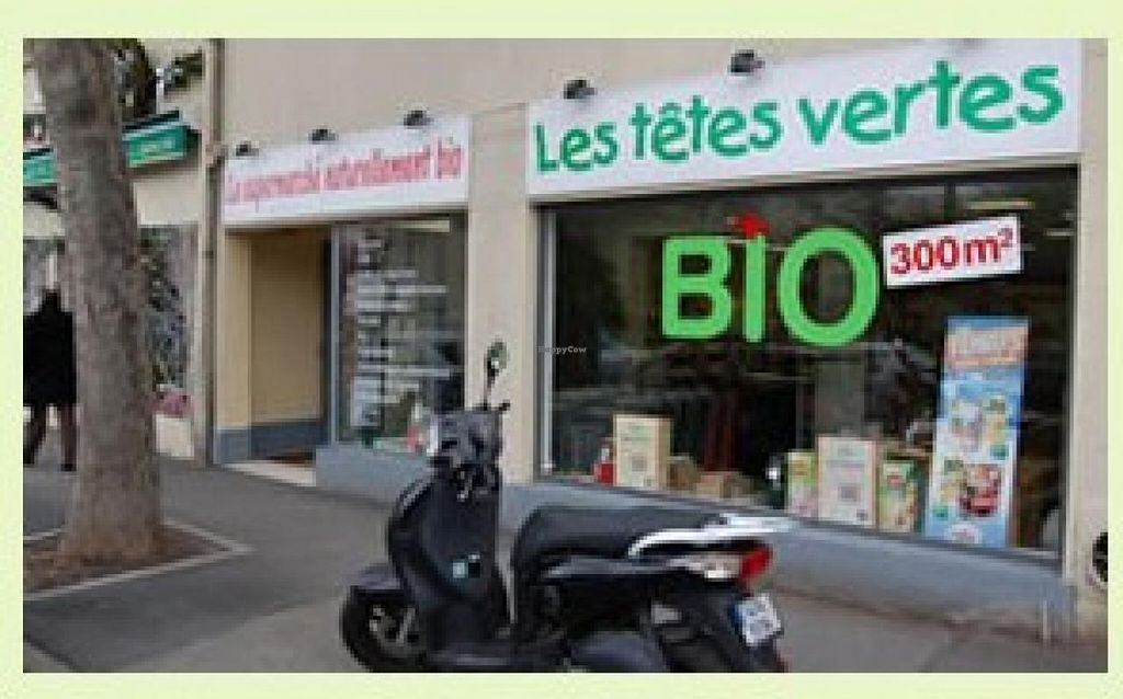 """Photo of Les Tetes Verts  by <a href=""""/members/profile/community"""">community</a> <br/>Les Tetes Verts <br/> January 12, 2015  - <a href='/contact/abuse/image/54632/90218'>Report</a>"""