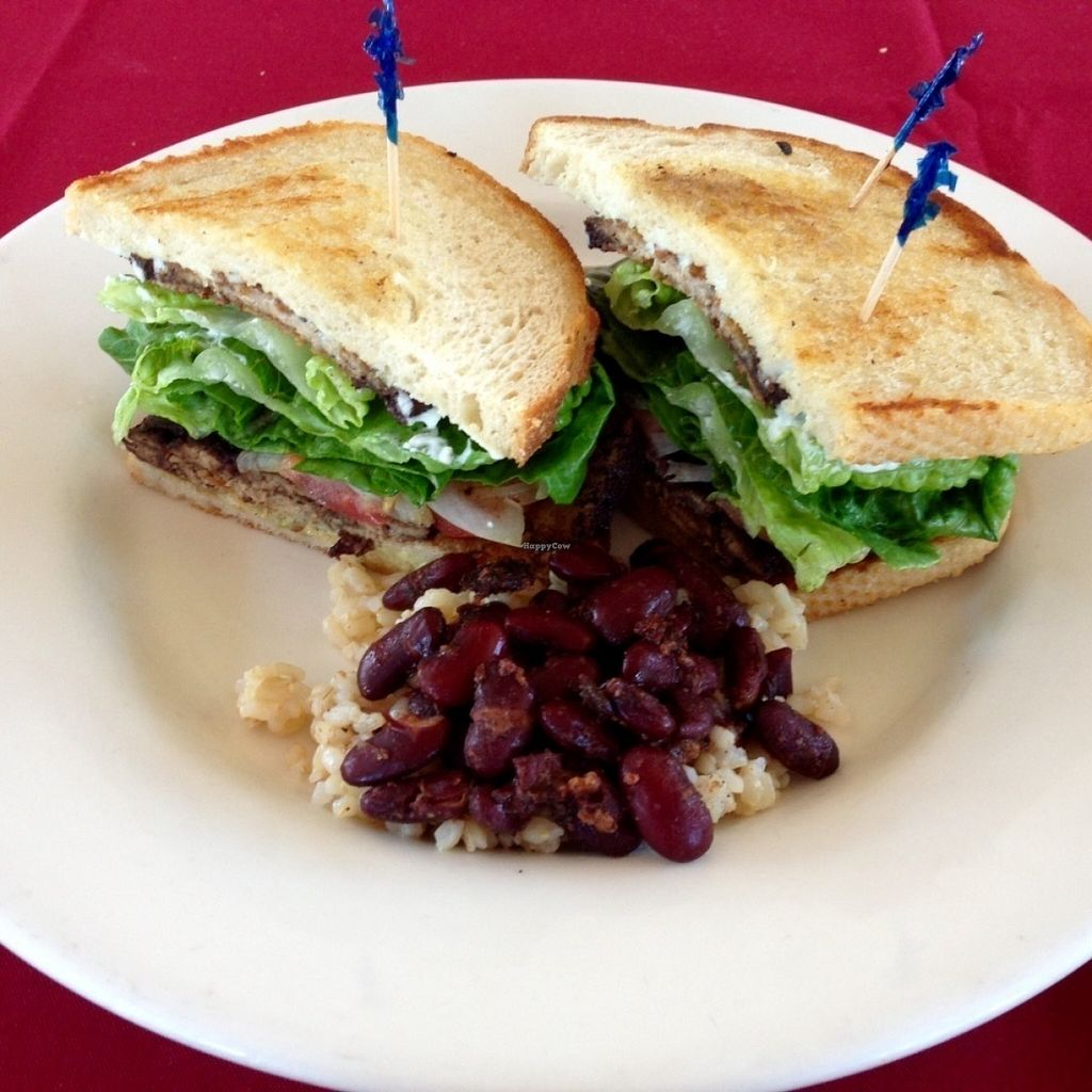 """Photo of Quickie Too  by <a href=""""/members/profile/DonandMary"""">DonandMary</a> <br/>Jamaican style Tempeh, Lettuce, and Tomato sandwich with rice and beans.  <br/> July 21, 2016  - <a href='/contact/abuse/image/5473/161460'>Report</a>"""