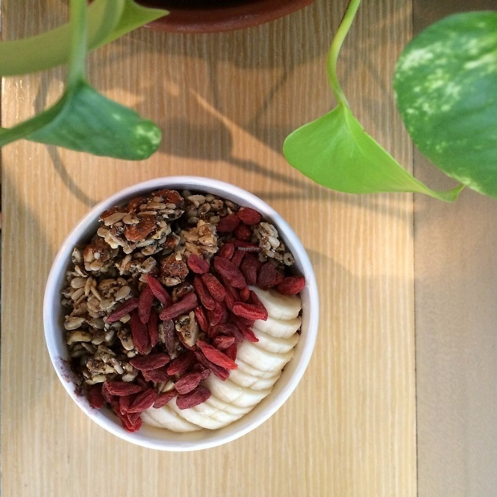 """Photo of Truce - 32nd St  by <a href=""""/members/profile/KatieBush"""">KatieBush</a> <br/>smoothie bowl- it was out of this world! <br/> June 19, 2017  - <a href='/contact/abuse/image/54759/270722'>Report</a>"""
