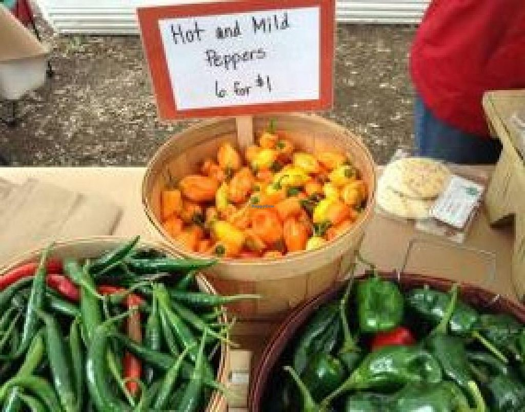 """Photo of Waco Downtown Farmers Market  by <a href=""""/members/profile/community"""">community</a> <br/>Waco Downtown Farmers Market <br/> January 15, 2015  - <a href='/contact/abuse/image/54779/90417'>Report</a>"""