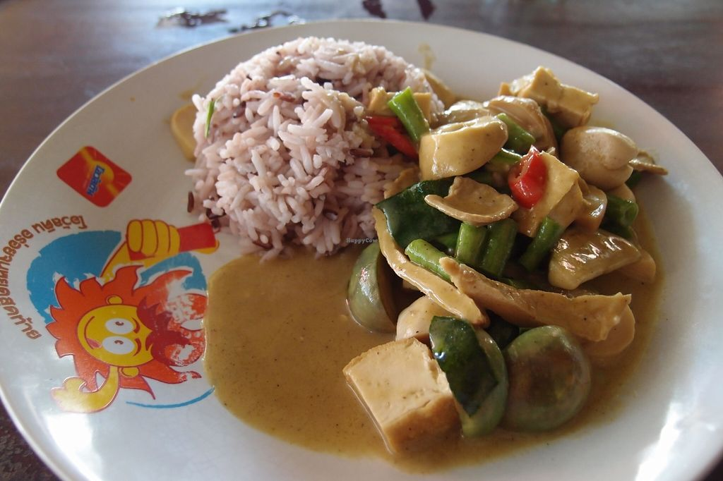 Photo of CLOSED: Keereboon Vegetarian Food  by Vegreg <br/>Tofu and mushrooms green curry, with brown rice <br/> March 15, 2016  - <a href='/contact/abuse/image/54802/140054'>Report</a>