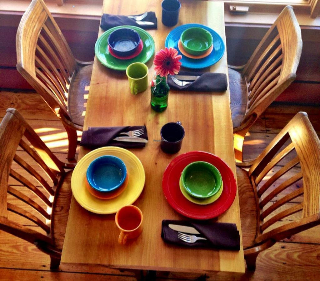 """Photo of The Clean Plate Kitchen  by <a href=""""/members/profile/Nikkijean"""">Nikkijean</a> <br/>Colorful Fiesta ware and fun menu <br/> February 24, 2015  - <a href='/contact/abuse/image/54877/94061'>Report</a>"""