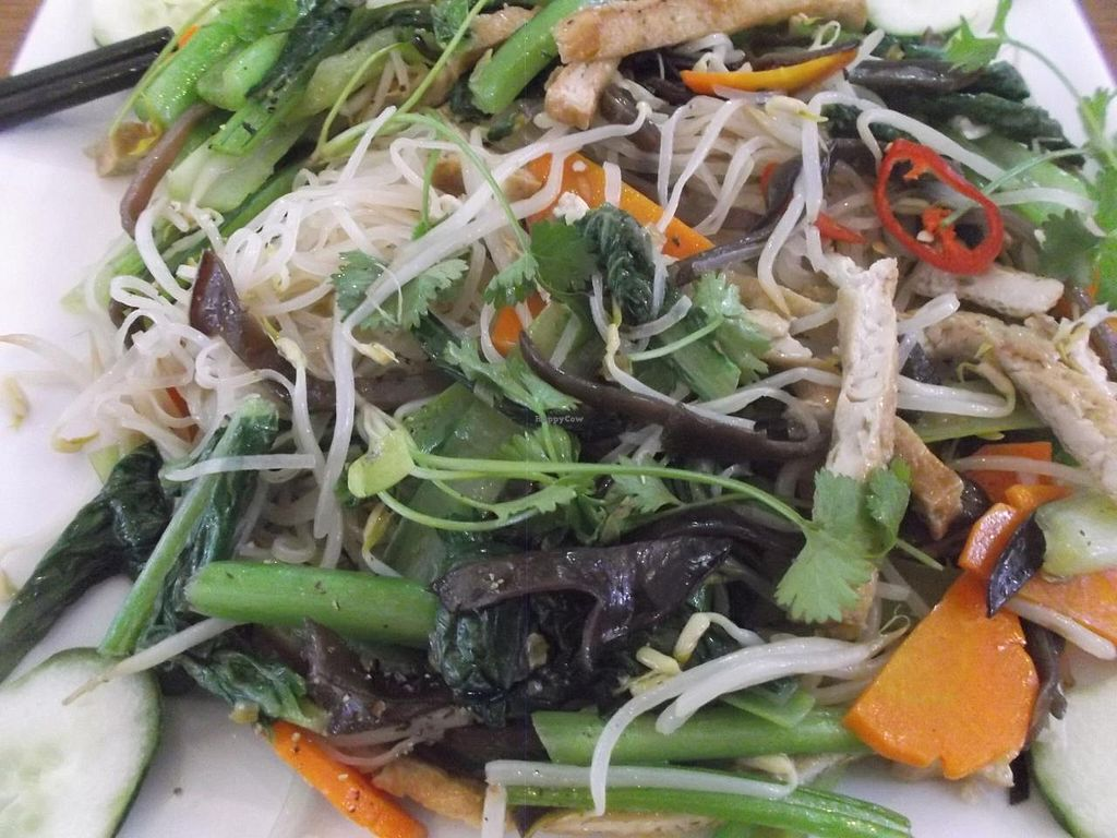 """Photo of Tam Thien  by <a href=""""/members/profile/mfalgas"""">mfalgas</a> <br/>Salad, rice noodles, carrot and spices <br/> January 26, 2015  - <a href='/contact/abuse/image/54946/91434'>Report</a>"""