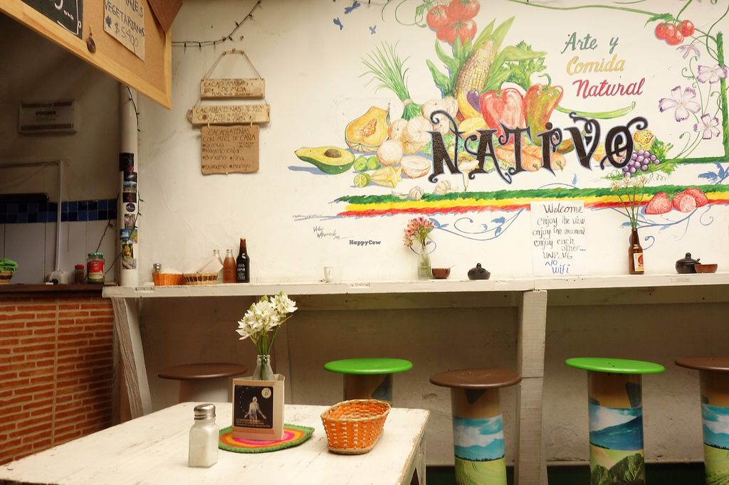 """Photo of Nativo  by <a href=""""/members/profile/Eepie"""">Eepie</a> <br/>Interior <br/> August 15, 2017  - <a href='/contact/abuse/image/54950/292961'>Report</a>"""