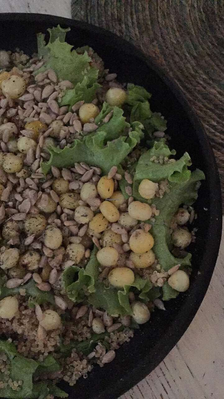 """Photo of Nativo  by <a href=""""/members/profile/Bella99"""">Bella99</a> <br/>filling salad with corn and sunflower seeds <br/> September 2, 2017  - <a href='/contact/abuse/image/54950/299905'>Report</a>"""