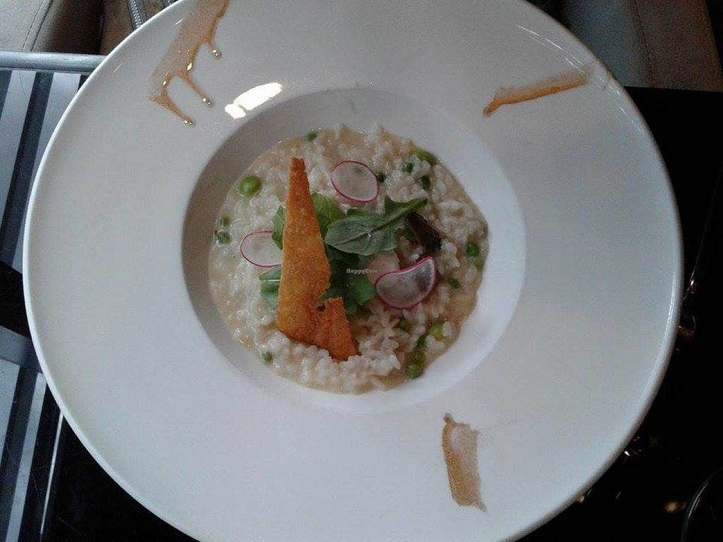 """Photo of Joie Restaurant  by <a href=""""/members/profile/sfalee"""">sfalee</a> <br/>Truffle Risotto <br/> June 23, 2016  - <a href='/contact/abuse/image/54966/155674'>Report</a>"""