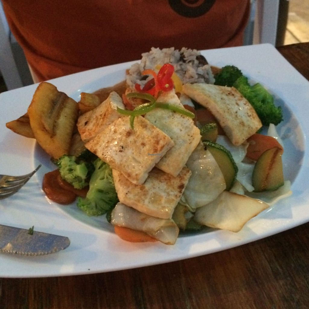 """Photo of Lola Valentina  by <a href=""""/members/profile/JoeKun"""">JoeKun</a> <br/>Delicious vegan food with plantain, rice, beans, tofu and vegetables <br/> December 29, 2015  - <a href='/contact/abuse/image/54967/130279'>Report</a>"""