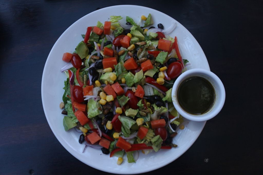 """Photo of Lola Valentina  by <a href=""""/members/profile/evoontoast"""">evoontoast</a> <br/>Fresh, healthy salad <br/> February 27, 2017  - <a href='/contact/abuse/image/54967/230991'>Report</a>"""