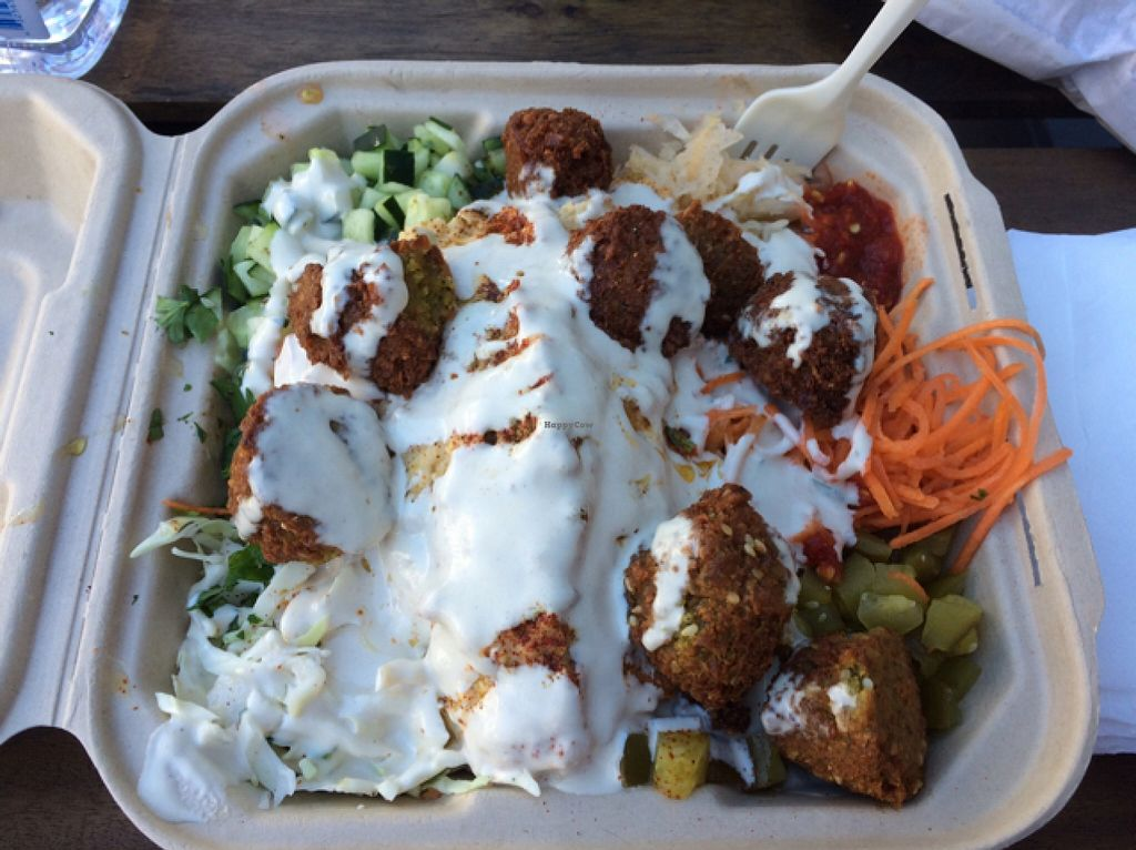 """Photo of The Flying Falafel  by <a href=""""/members/profile/Yakimom"""">Yakimom</a> <br/>plate me <br/> September 26, 2015  - <a href='/contact/abuse/image/55068/119201'>Report</a>"""