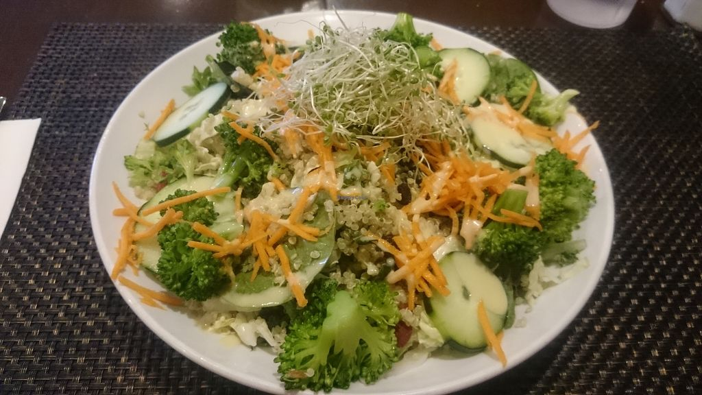 "Photo of Violette's Vegan Organic Eatery and Juice Bar  by <a href=""/members/profile/chb-pbfp"">chb-pbfp</a> <br/>Superfood Quinoa Salad <br/> April 8, 2018  - <a href='/contact/abuse/image/55147/382217'>Report</a>"