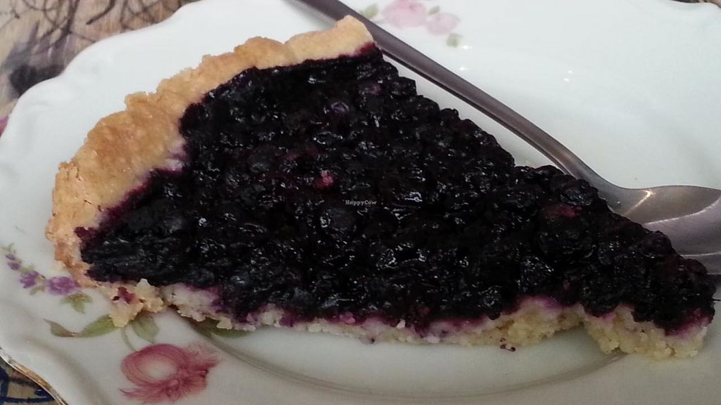 """Photo of Femtopia  by <a href=""""/members/profile/eric"""">eric</a> <br/>blueberry pie <br/> May 17, 2015  - <a href='/contact/abuse/image/55221/102511'>Report</a>"""