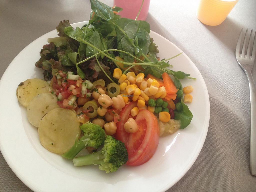 """Photo of O Vegetariano Gourmet  by <a href=""""/members/profile/Paolla"""">Paolla</a> <br/>Some of the options of the salad buffet <br/> March 21, 2015  - <a href='/contact/abuse/image/55269/96403'>Report</a>"""