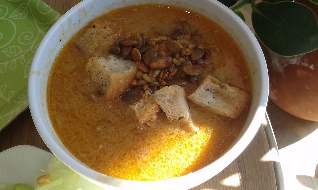"Photo of CLOSED: Satori  by <a href=""/members/profile/Coralin"">Coralin</a> <br/>Lentil soup with bread and margarine, punkin seeds, pipe seeds <br/> March 13, 2017  - <a href='/contact/abuse/image/55286/235857'>Report</a>"