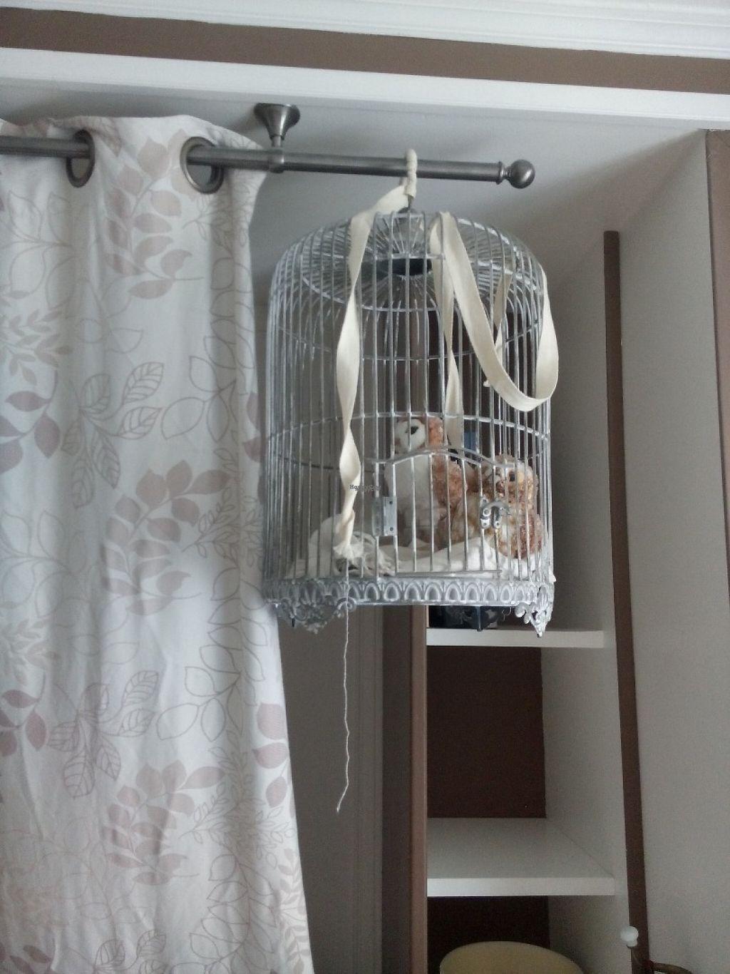 """Photo of Chambres de la Grande Porte  by <a href=""""/members/profile/markostova"""">markostova</a> <br/>fluffy pets in """"Creme"""" room ;) <br/> April 22, 2017  - <a href='/contact/abuse/image/55297/251016'>Report</a>"""