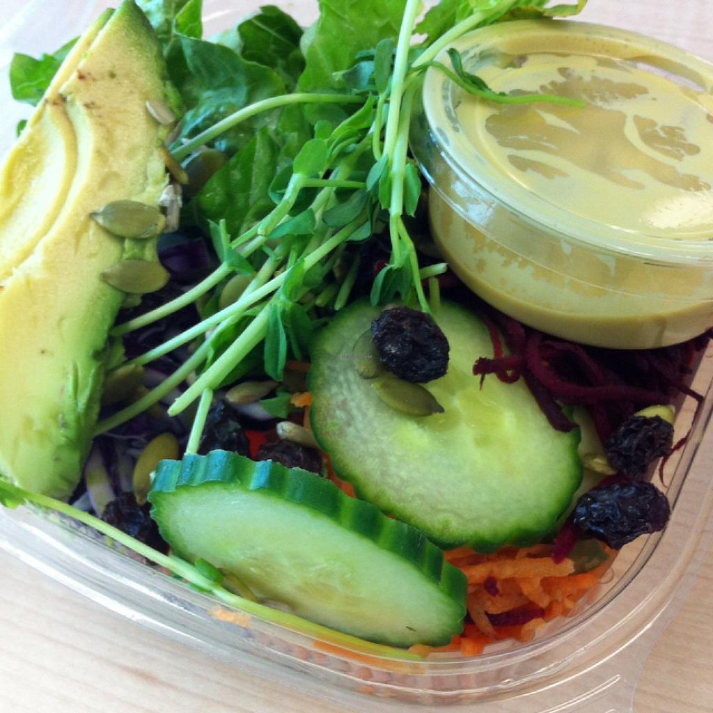 """Photo of CLOSED: The Green Moustache  by <a href=""""/members/profile/vegan%20frog"""">vegan frog</a> <br/>salad take out <br/> April 3, 2015  - <a href='/contact/abuse/image/55304/97735'>Report</a>"""