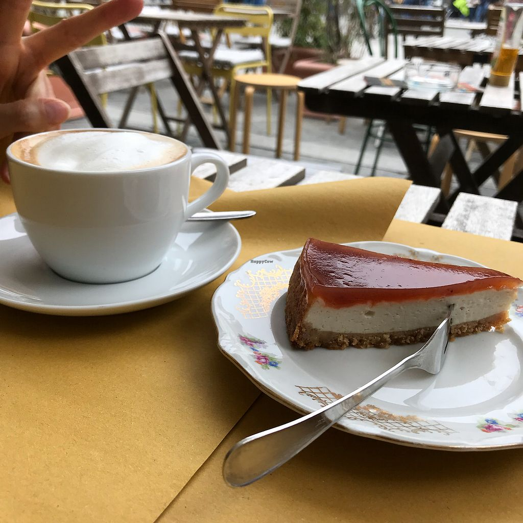 """Photo of Sali and Pistacchi  by <a href=""""/members/profile/earthville"""">earthville</a> <br/>Cheesecake & cappuccino <br/> October 1, 2017  - <a href='/contact/abuse/image/55321/310576'>Report</a>"""