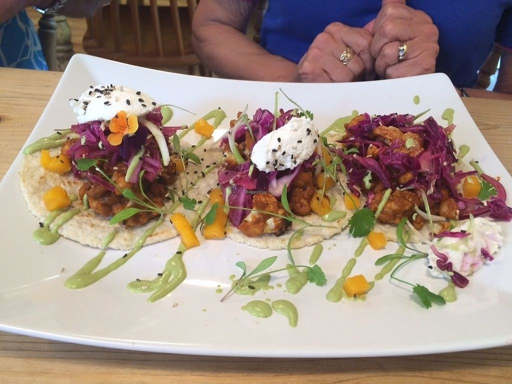 """Photo of Offbeet Food  by <a href=""""/members/profile/Kiwi%20Wannabe"""">Kiwi Wannabe</a> <br/>BBQ Cauliflower Tacos <br/> July 20, 2016  - <a href='/contact/abuse/image/55388/161155'>Report</a>"""