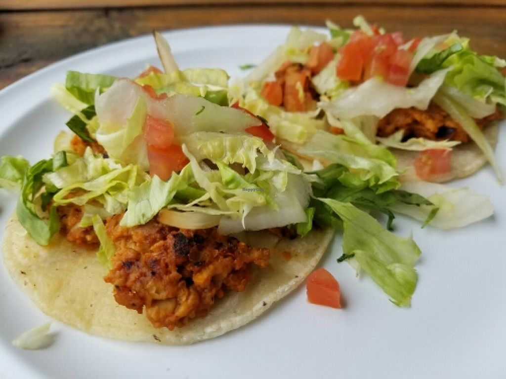 """Photo of El Nutri Taco  by <a href=""""/members/profile/EverydayTastiness"""">EverydayTastiness</a> <br/>veggie tacos <br/> June 11, 2016  - <a href='/contact/abuse/image/55396/153526'>Report</a>"""