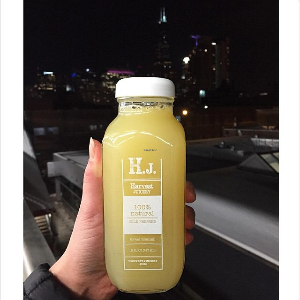 """Photo of Harvest Juicery  by <a href=""""/members/profile/community"""">community</a> <br/>Harvest Juicery <br/> February 5, 2015  - <a href='/contact/abuse/image/55431/92257'>Report</a>"""