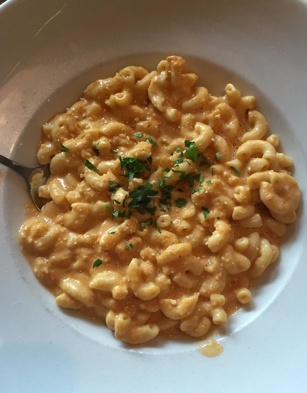 """Photo of Saranac Public House  by <a href=""""/members/profile/HeatherMeese"""">HeatherMeese</a> <br/>Vegan Mac and Cheese <br/> February 7, 2015  - <a href='/contact/abuse/image/55495/233566'>Report</a>"""
