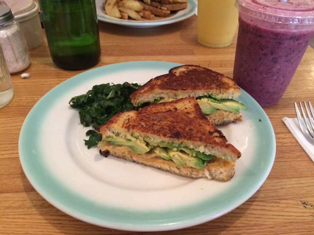 """Photo of CLOSED: Pulp Cafe & Juice Bar  by <a href=""""/members/profile/Khajioannou"""">Khajioannou</a> <br/>grilled avocado sandwich  <br/> December 9, 2015  - <a href='/contact/abuse/image/55533/127747'>Report</a>"""