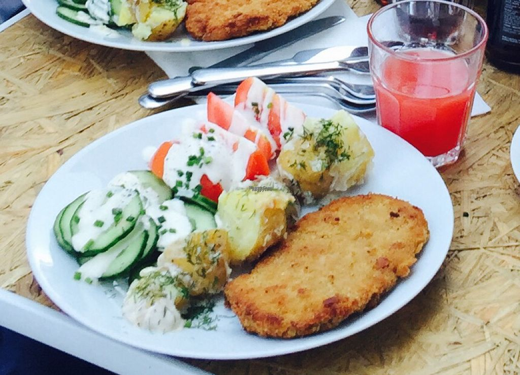 """Photo of Lokal Vegan Bistro  by <a href=""""/members/profile/ela12"""">ela12</a> <br/>Traditional polish home meal <br/> September 1, 2016  - <a href='/contact/abuse/image/55545/172768'>Report</a>"""