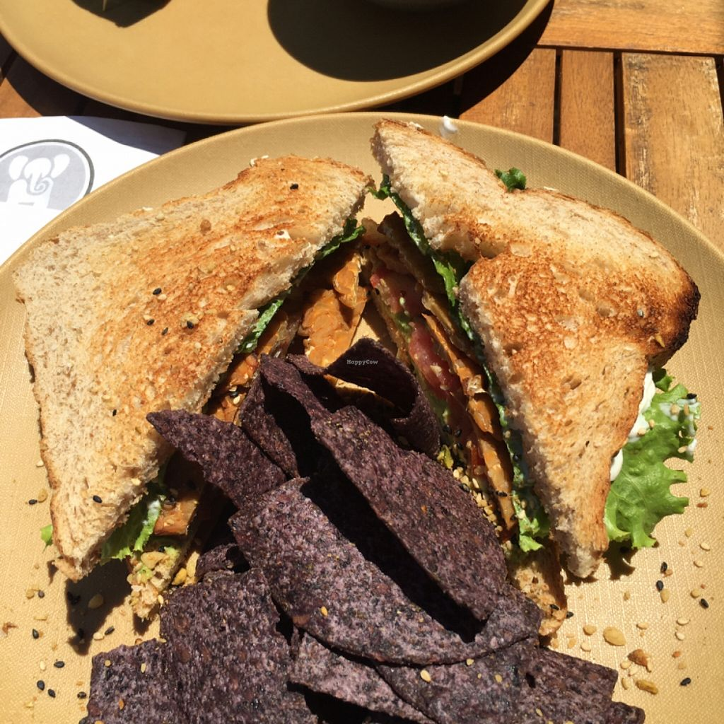 Photo of Fruits and Roots  by VeganBoo <br/>Vegan BLT yum <br/> May 7, 2016  - <a href='/contact/abuse/image/55794/147872'>Report</a>