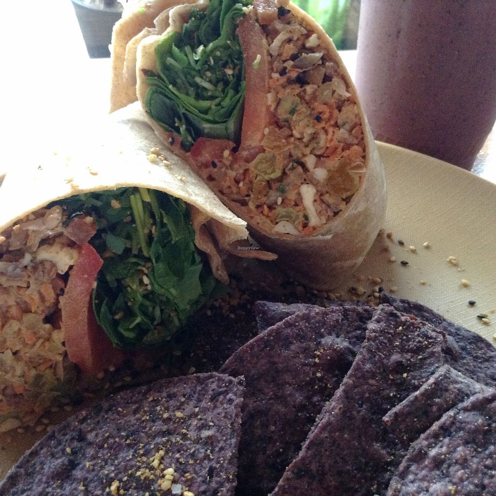 """Photo of Fruits and Roots  by <a href=""""/members/profile/Julie%20R"""">Julie R</a> <br/>The 'Tuna' Chick wrap.  There was a LOT of the tuna in the wrap (most places put more greens than substance - but here it was filled with the good stuff!) <br/> May 21, 2016  - <a href='/contact/abuse/image/55794/150155'>Report</a>"""