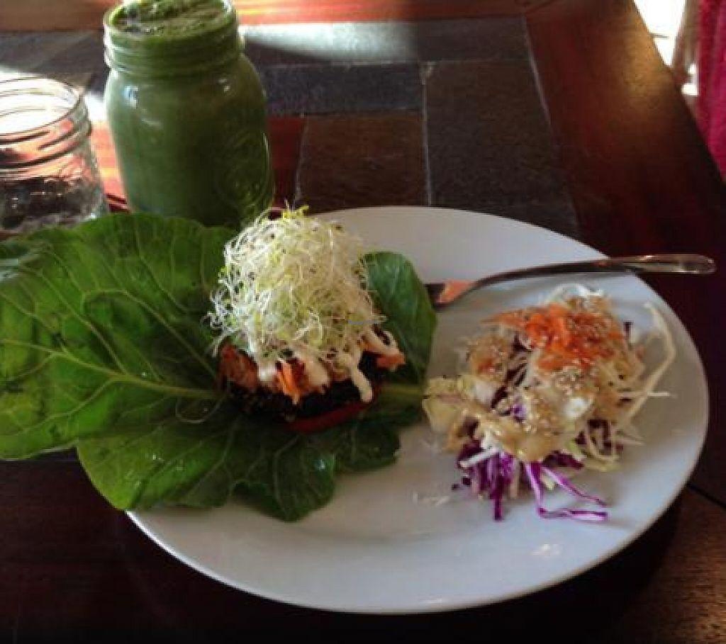 "Photo of Eternal Abundance Organic Market & Cafe  by <a href=""/members/profile/JoeVeg"">JoeVeg</a> <br/>Raw Veggie Burger <br/> April 12, 2013  - <a href='/contact/abuse/image/5579/193886'>Report</a>"