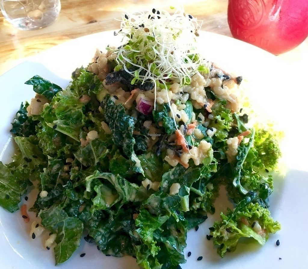 """Photo of Eternal Abundance Organic Market & Cafe  by <a href=""""/members/profile/vegan%20frog"""">vegan frog</a> <br/>Alex's special salad <br/> September 5, 2016  - <a href='/contact/abuse/image/5579/193890'>Report</a>"""
