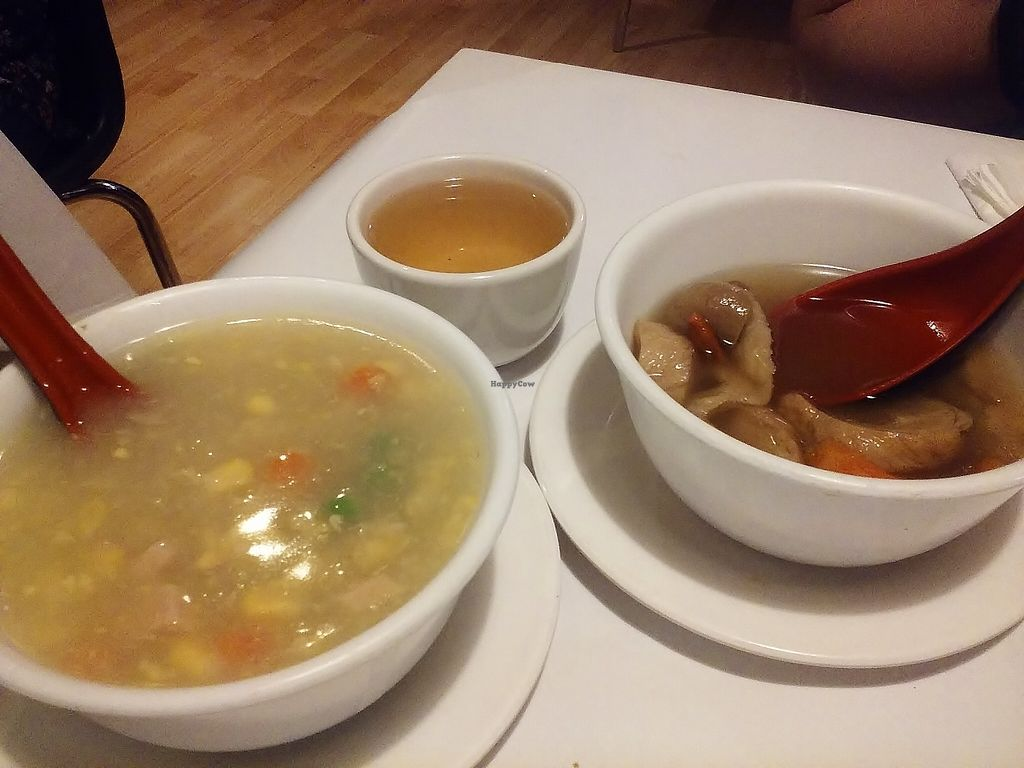 """Photo of Vegie Hut  by <a href=""""/members/profile/verbosity"""">verbosity</a> <br/>Sweet Corn soup and Pepper Gluten soup <br/> October 30, 2015  - <a href='/contact/abuse/image/5596/123258'>Report</a>"""