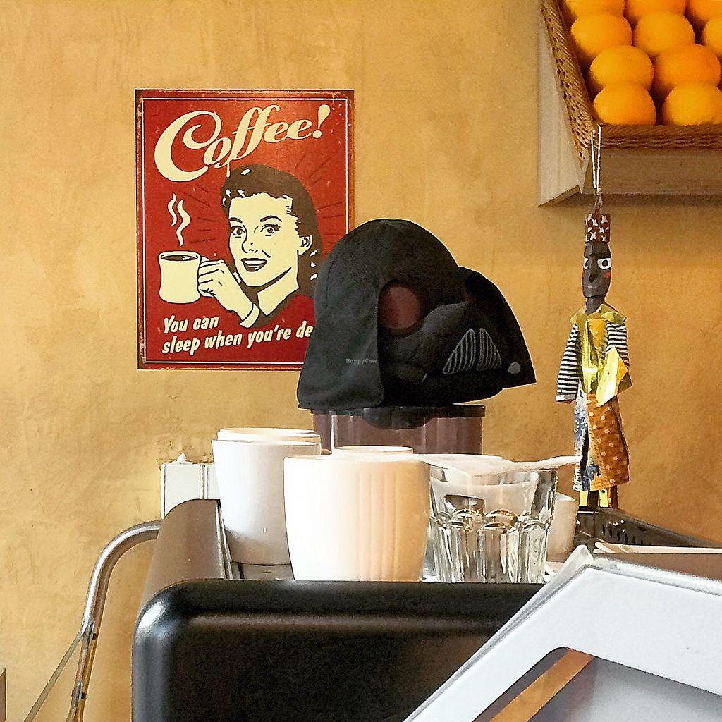 "Photo of Veggie Garden  by <a href=""/members/profile/kaffeekanna"">kaffeekanna</a> <br/>Star Wars Coffee <br/> October 25, 2017  - <a href='/contact/abuse/image/56175/318697'>Report</a>"