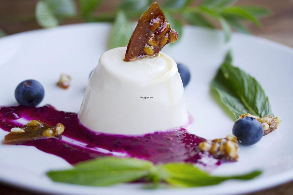 """Photo of CLOSED: The Dandylion Bondi  by <a href=""""/members/profile/Dandylion"""">Dandylion</a> <br/>Cardamon Vanilla Pannacotta with White chocolate, Beetroot & Lime Ganache, topped with Pine nut Brittle and Blueberries <br/> March 4, 2015  - <a href='/contact/abuse/image/56209/94896'>Report</a>"""