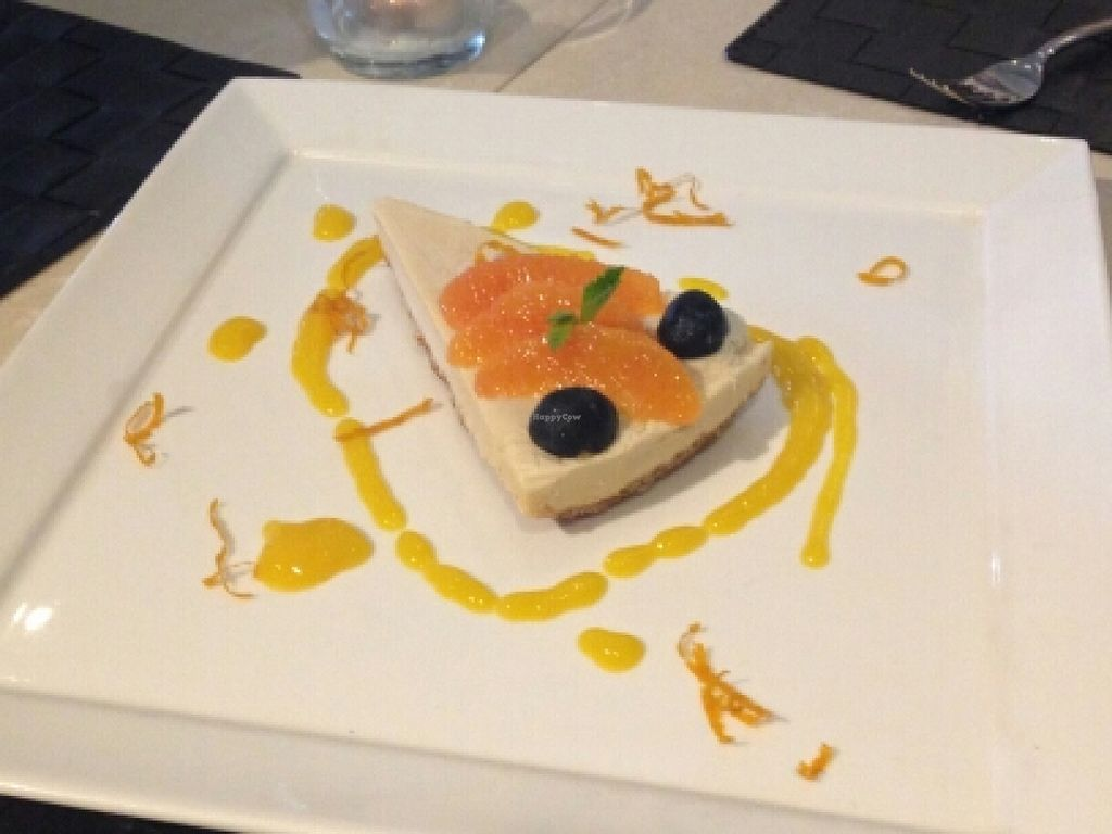 """Photo of Ashley's by LivingFood  by <a href=""""/members/profile/Stevie"""">Stevie</a> <br/>raw vegan cheese cake <br/> April 8, 2016  - <a href='/contact/abuse/image/56254/143294'>Report</a>"""