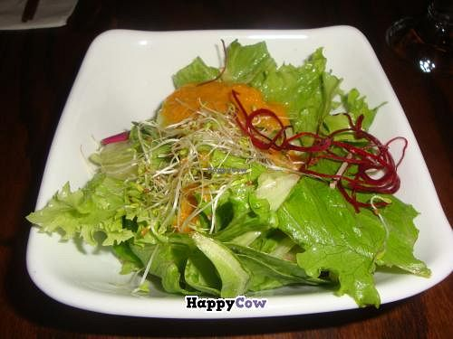 """Photo of LuAnne's Wild Ginger  by <a href=""""/members/profile/Sonja%20and%20Dirk"""">Sonja and Dirk</a> <br/>mango salad <br/> July 21, 2013  - <a href='/contact/abuse/image/5642/51841'>Report</a>"""